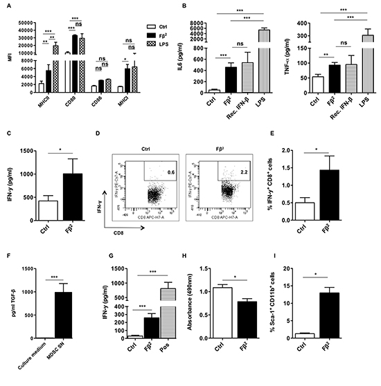 The Fβ2 fusokine modulates myeloid cells to improve CD8+ T cell responses.
