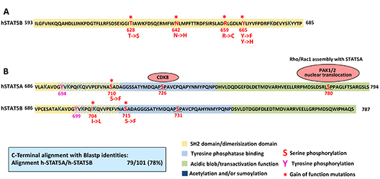 Gain of function mutations in STAT5.