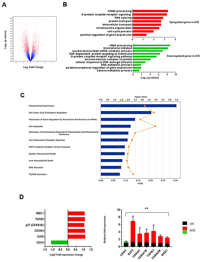 Gene expression analysis of AOE-reprogrammed tumour xenografts.