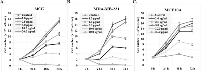 Effect of cis-khellactone on the cell proliferation and viability of MCF7, MDA-MB-231, and MCF10A breast cancer and normal cell lines.