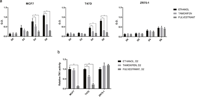 Effect of ET on cell proliferation and TK1 activity in vitro.