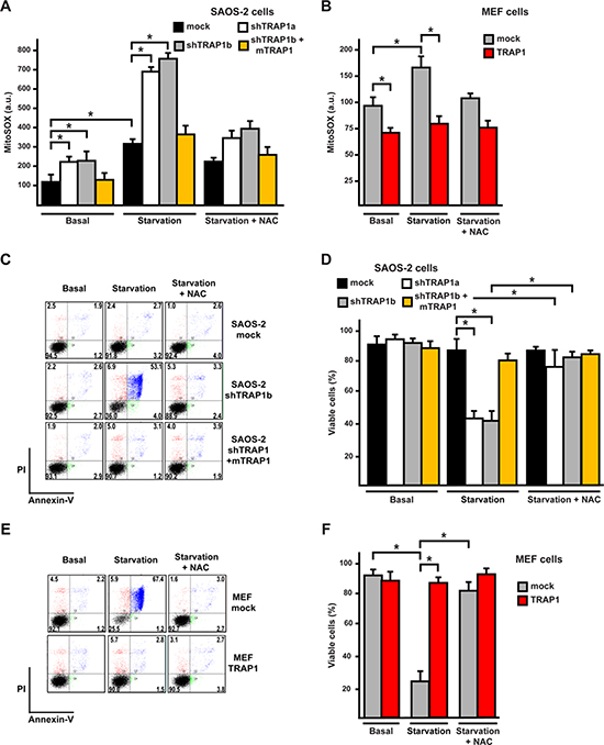 TRAP1 expression protects cells from oxidative stress and death elicited by serum and glucose depletion.