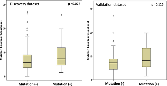 Comparison of mutation load in patients with mutated and wild type ATM/RB1 genes.