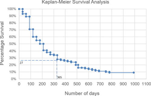 Overall survival of patients.