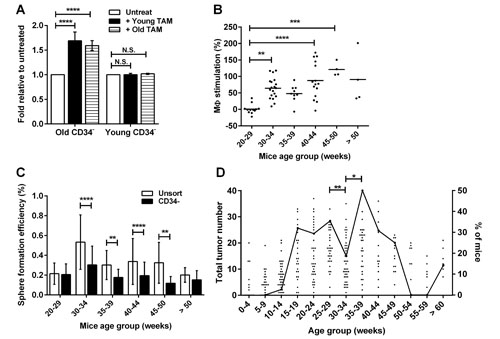 Acquisition of macrophage responsiveness by TICs coincides with tumor progression.