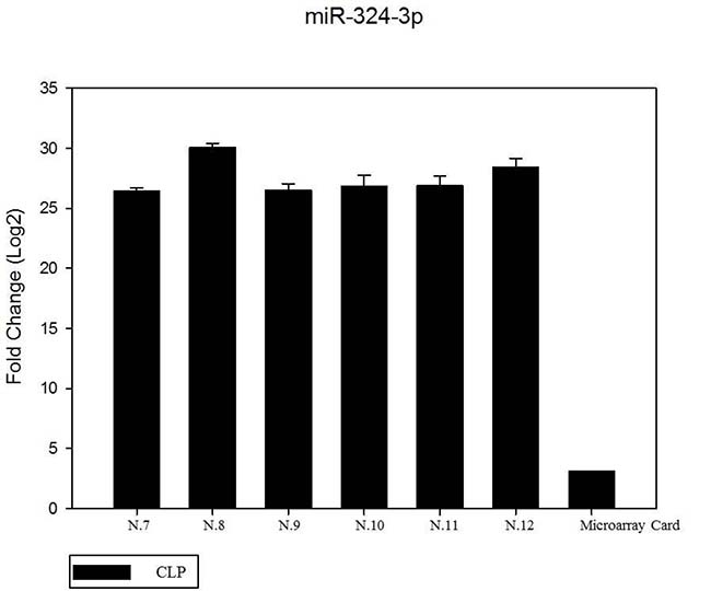 The expression of miR-324-3p in 6 patients by RT- PCR as compared in the microarray card.