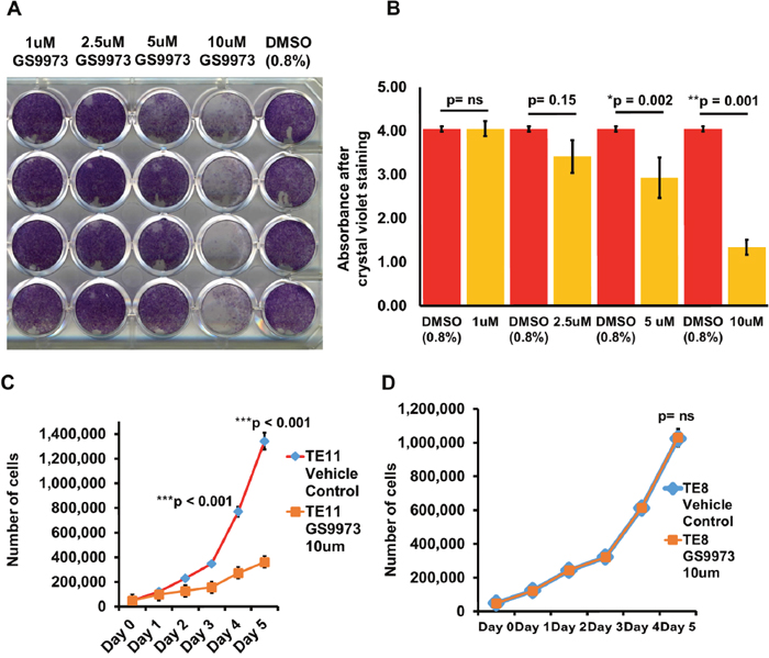 Effect of SYK inhibition using entospletinib/GS9973 on cell proliferation and cell doubling time of TE11 and TE8 cells.