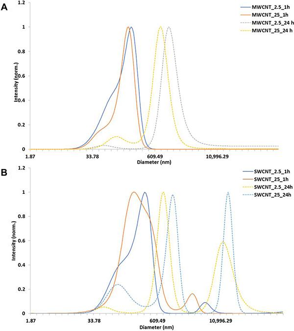 Characterization of carbon nanotubes in exposure medium.