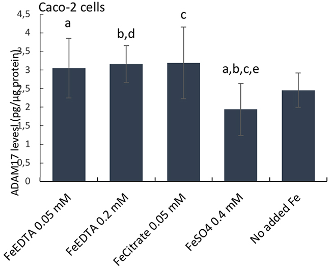 ADAM17 protein levels in human epithelial duodenum adenocarcinoma Caco-2 cells.