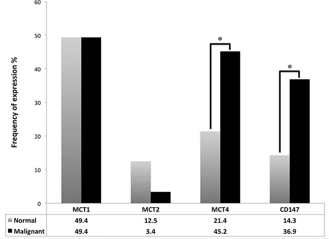 Frequency of plasma membrane expression of MCT1, MCT2, MCT4 and CD147 in TGCTs and normal testicular tissue.
