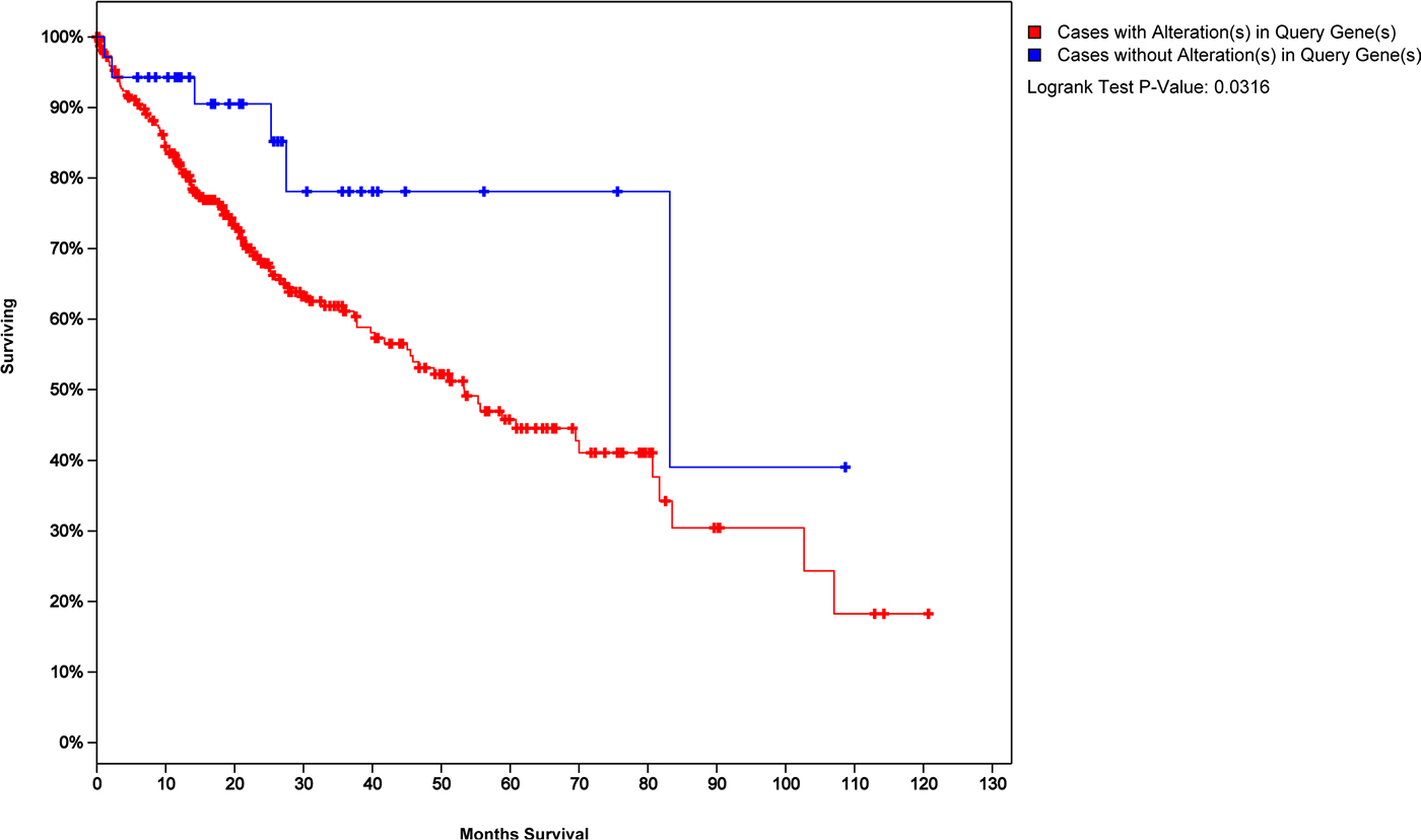 Survival analysis of HCC patients with 45 cross-talk model genes as a tag.