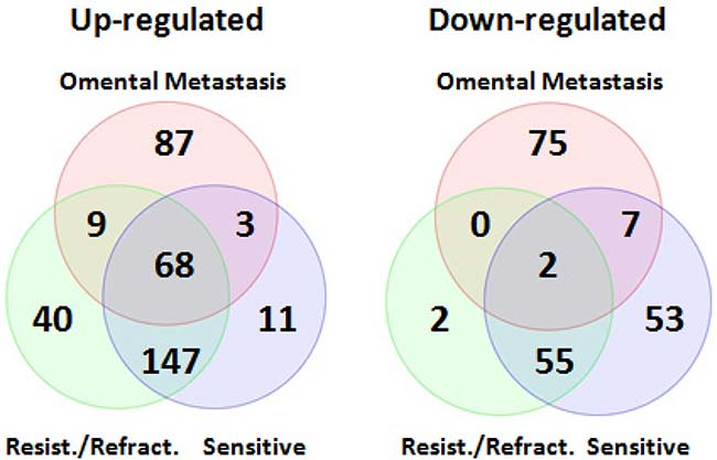 Venn diagrams of differentially expressed miRNAs shared between primary and metastatic serous ovarian carcinoma.
