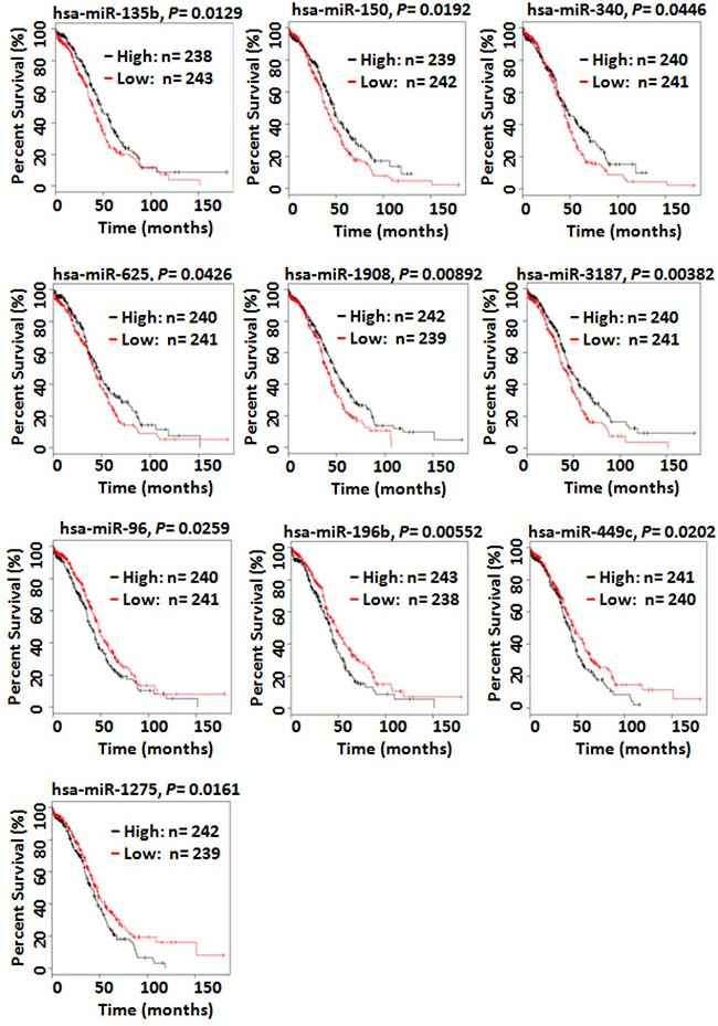 Kaplan–Meier overall survival curves for the ovarian cancer patient cohort in the TCGA data based on the expression of miRNAs.