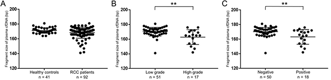 Fragment sizes of plasma cfDNA in RCC patients were shorter than those in healthy controls.