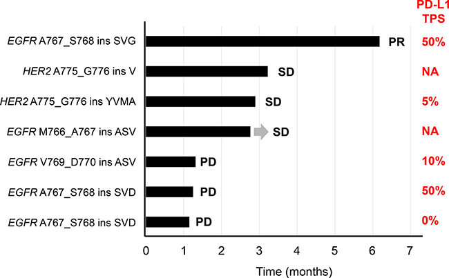 Swimmer plot for duration of disease stability or response to nivolumab treatment in patients with exon-20 mutations of EGFR or HER2.