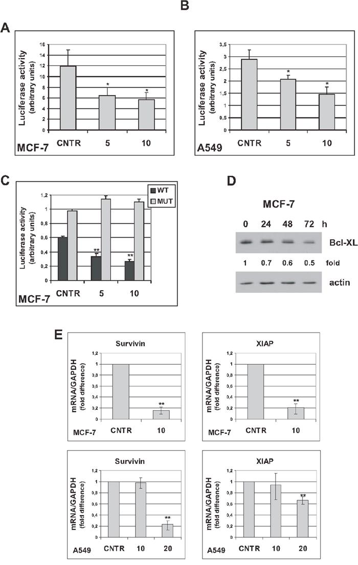 Oncotarget | Trabectedin modulates the senescence-associated