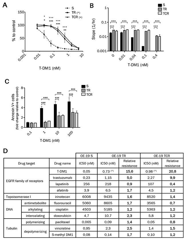 Chronic exposure to T-DM1 of OE-19 cell line results in resistance to this immunoconjugate.