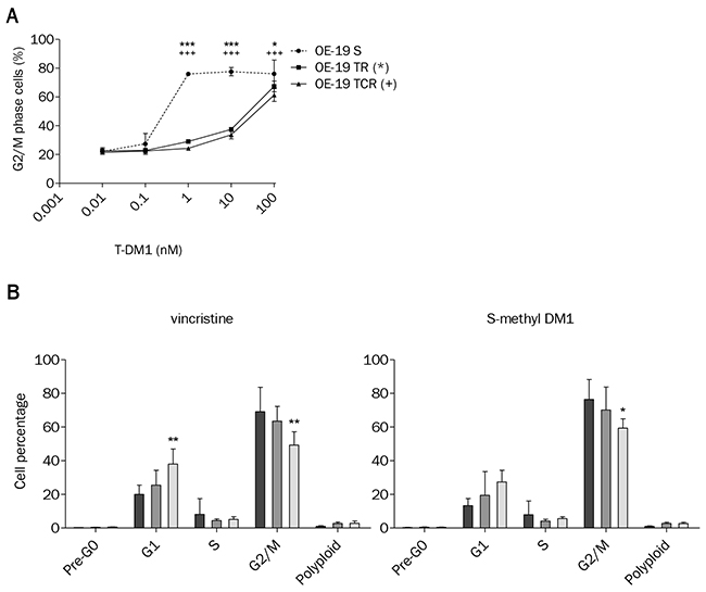 T-DM1-induced cell cycle arrest is impaired in OE-19 TR and TCR compared to OE-19 S.