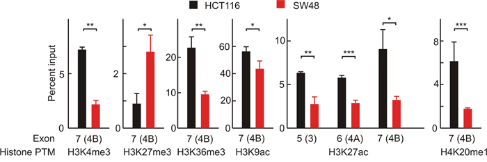 Nuc-ChIP analysis of histone epigenetic modifications in nucleosomes located over the exons 3, 4A and 4B.