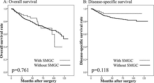 Survival curves of patients undergoing gastrectomy with curative intent according to the presence of synchronous multiple gastric cancers (SMGC).