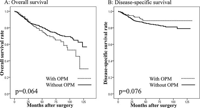 Survival curves in patients undergoing gastrectomy with curative intent according to the presence of other primary malignancies (OPMs).