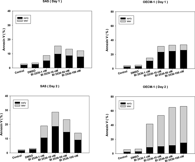 BI2536 induced early and late apoptosis in SAS and OECM-1 cells.
