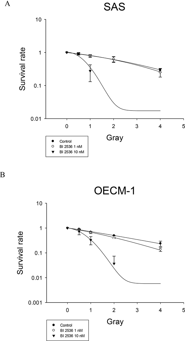 Radiation survival of SAS and OECM-1 cells.