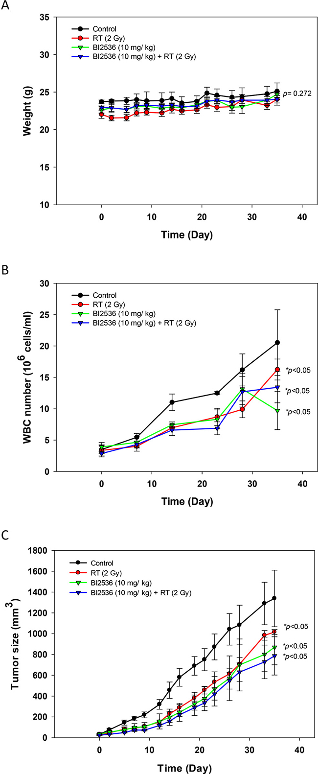 Effects of radiation and BI2536 in SAS xenograft mice.