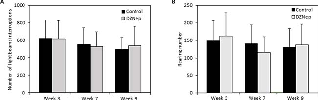Effect of chronic DZNep injections on spontaneous locomotor activity.
