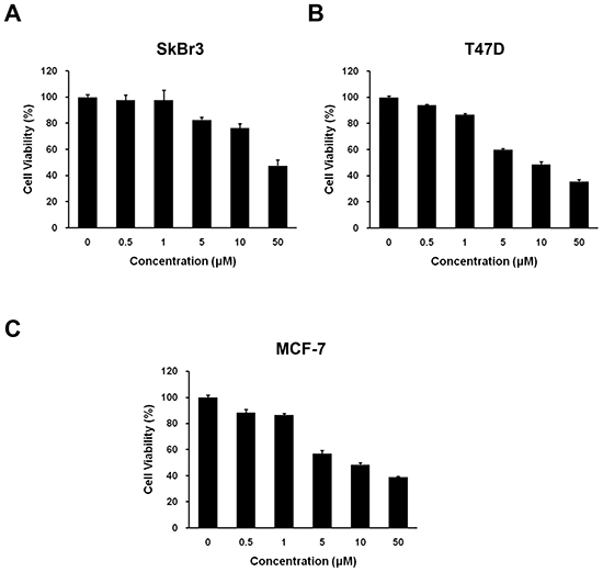 Effect of HS-133 on the proliferation of human breast cancer cells.