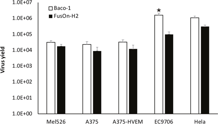 Virus yield of Baco-1 and FusOn-H2 in tumor cell lines that express different receptor profile.