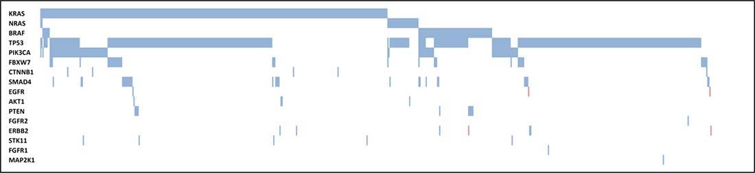 Molecular profile of CRC samples.
