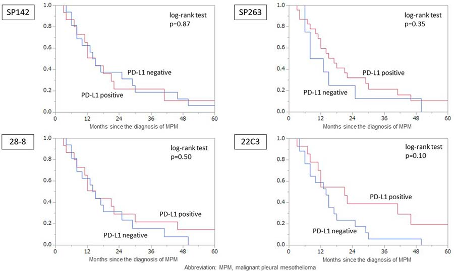 The MPM overall survival according to the PD-L1 expression of tumor cells according to each assay.