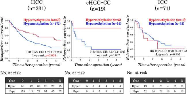 Relationships between the LINE-1 methylation status and patient survival.