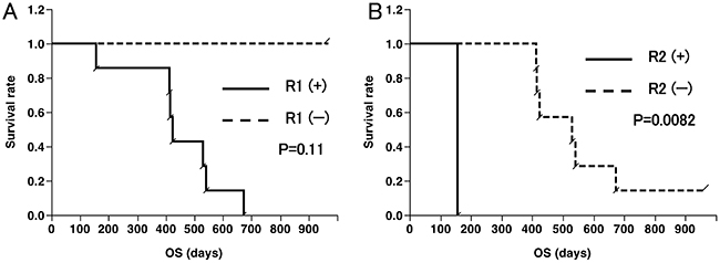Overall survival (OS) curves according to CD8+ T-cell responses.