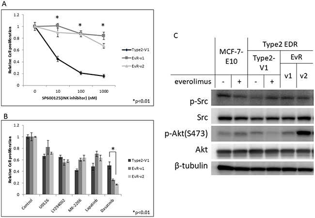 Effect of the JNK inhibitor, SP600125, on Type 2 EDR (using V1) cells and everolimus-resistant variants generated from Type 2 EDR-V1 cells (EvR-v1, v2).