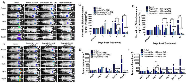 In vivo tumor growth analysis and bioluminescence imaging of mice bearing U87MG tumors stably expressing Fluc-eGFP.
