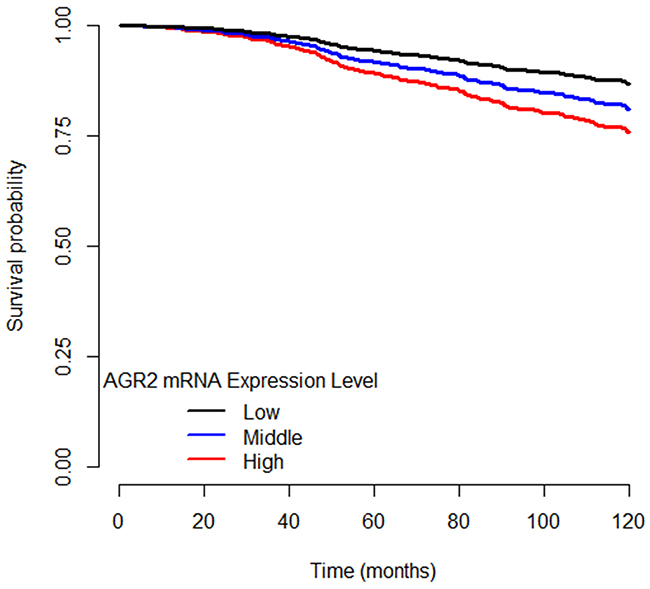 Disease-specific survival curves of ER+ breast cancer patients separated by AGR2 mRNA expression level.