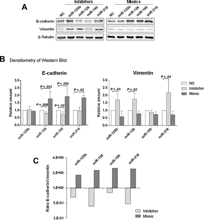 miR-126 and miR-218 inhibit the expression of EMT markers in MCF10DCIS cells.