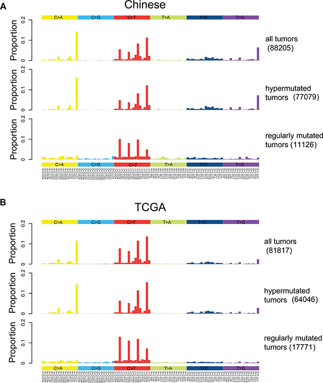 Somatic mutation spectrums for all, hypermutated and regularly mutated samples.