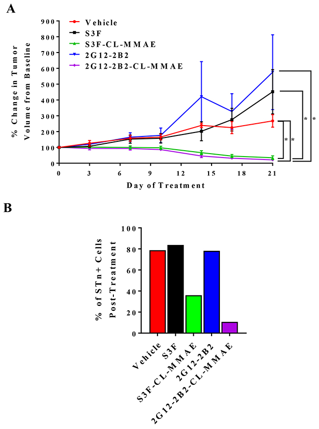 Anti-STn ADCs impede OvCa xenograft growth in vivo and target STn+ cells.