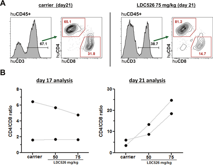 Analysis of human CD4+ and CD8+ T cell subsets in CLL transplanted NSG spleens.