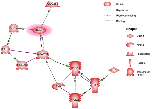 The direct interaction network of the genes identified from imprinting the hypermethylated regions in KD patients.