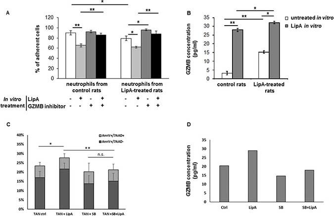 LipA induced neutrophil-mediated cytotoxicity via granzyme B production.