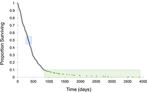 Survival curve for TCGA GBM dataset.