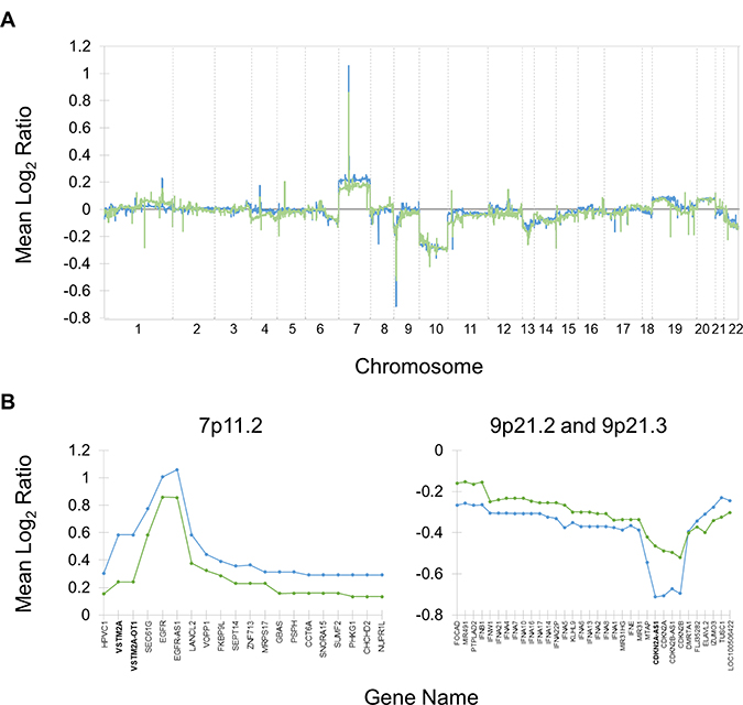 Copy number alterations in typical and exceptional responders relative to normal.