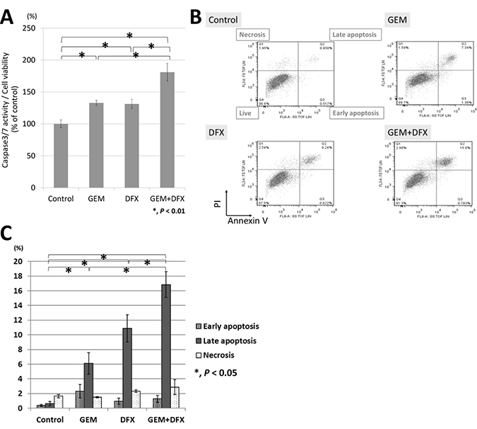 GEM+DFX induced apoptosis in pancreatic cancer cells in vitro.