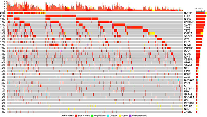 Somatic genomic alterations of all types (short variants, amplifications, deletions, fusions, and rearrangements) with a frequency of ≥2% and associated co-occurring mutations detected in the entire cohort.