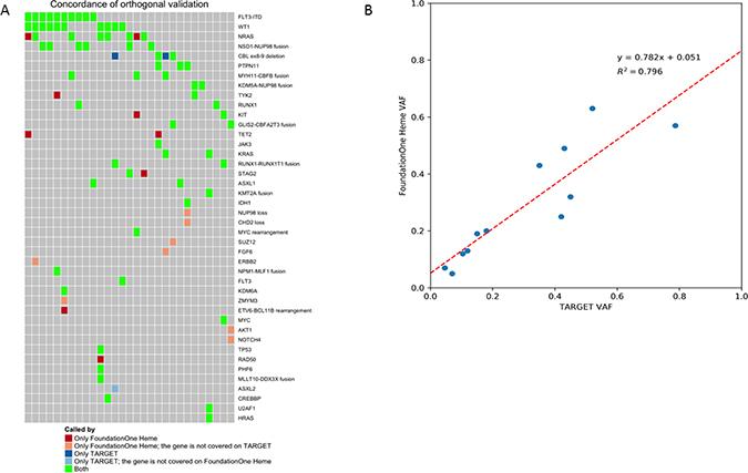 Orthogonal validation between F1H and TARGET platforms.