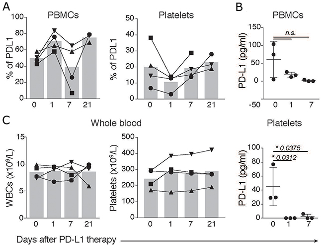 PD-L1 in platelets and PBMCs is affected by atezolizumab.